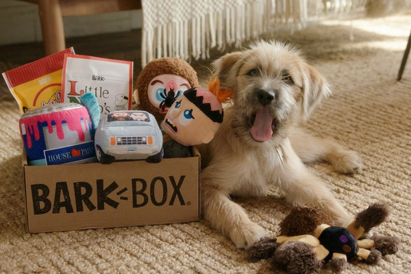 This 'Home Alone' BarkBox has toys and treats for your dog