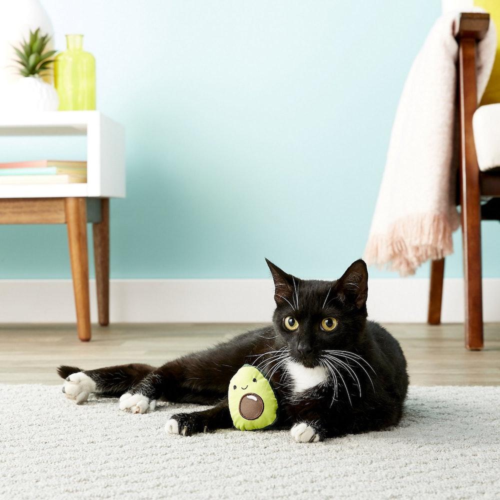 Lil' Avocato Cat Toy with Catnip