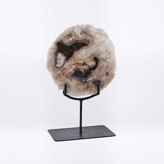 Petrified Wood Object
