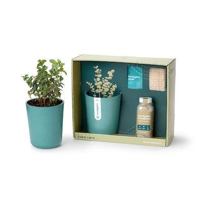 Just Breathe Eucalyptus Spa Gift Set