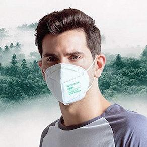 Powecom KN95 Face Mask (10-Pack)