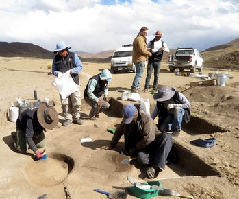 archaeology excavation burial