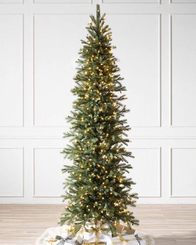 Cathedral Fir Tree