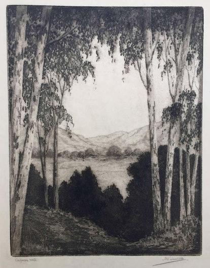 California Vista by Harold Lukens Doolittle