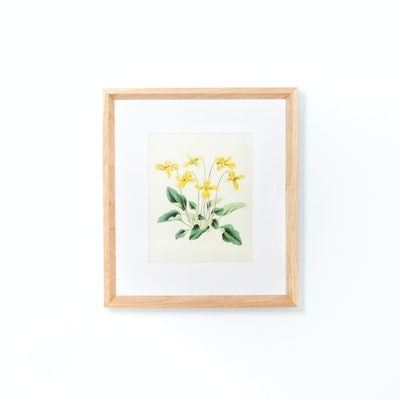 Solid Cheery Wood Frame