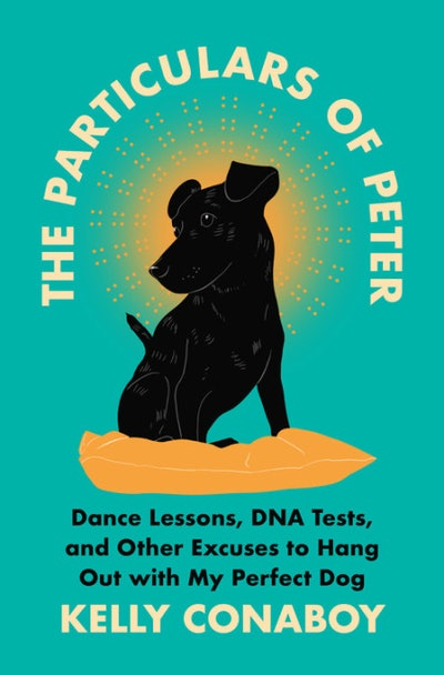 'The Particulars of Peter: Dance Lessons, DNA Tests, and Other Excuses to Hang Out with My Perfect D...