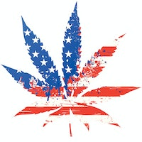 2020 election: What a marijuana shift in America means for future science