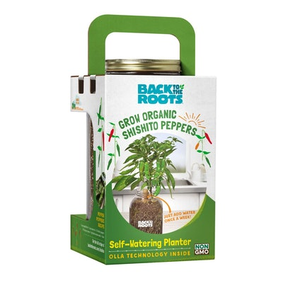 Self-Watering Planter Shishito Peppers Grow Kit