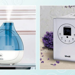 The best humidifiers for dry eyes