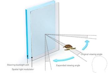 turtle hologram