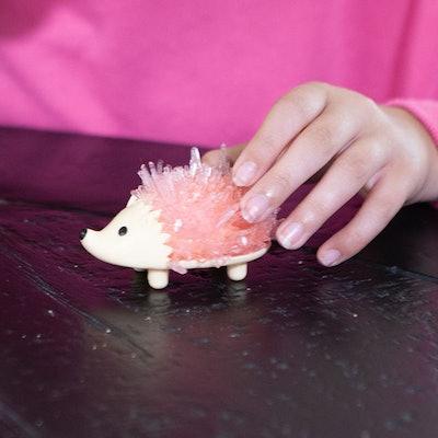 Crystal Growing Hedgehog