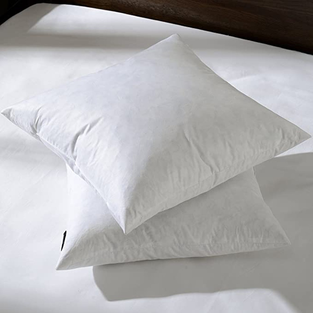 Decorative Throw Pillow Inserts (Set of 2)