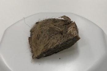 woolly mammoth fur