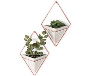 Umbra Trigg Hanging Planters (Set of 2)