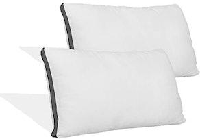Coop Queen-Size Pillow Protectors (2-Pack)