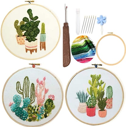 Cactus Embroidery Starter Kit