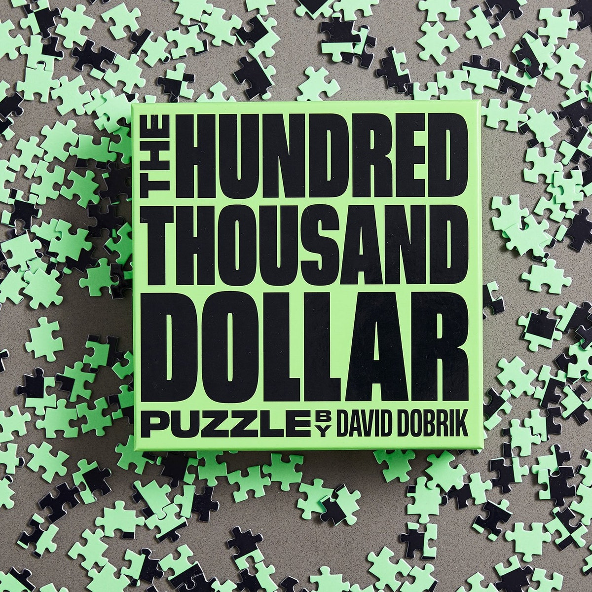THE HUNDRED THOUSAND DOLLAR PUZZLE by DAVID DOBRIK