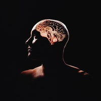 4 diet tweaks could fight off cognitive decline