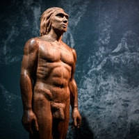 Sex between ancient humans fundamentally altered perception