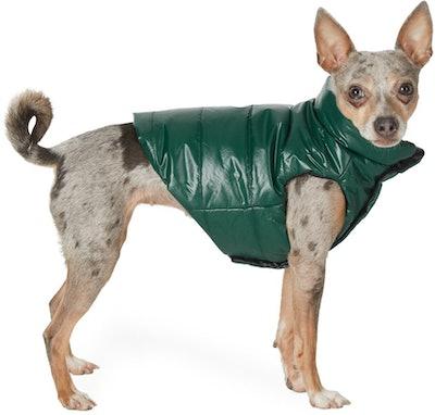 Reversible Green Poldo Dog Couture Edition Mondog Jacket