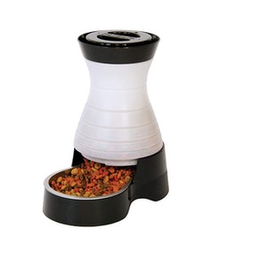 PetSafe Automatic Dog and Cat Feeder