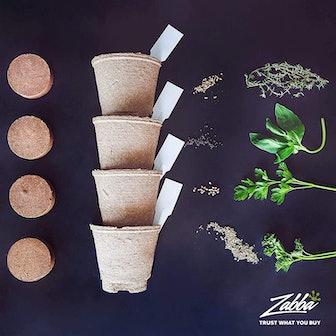Nature's Blossom Herb Garden Kit