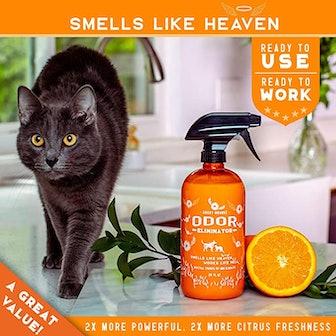 ANGRY ORANGE Ready-to-Use Citrus Odor Eliminator Pet Spray