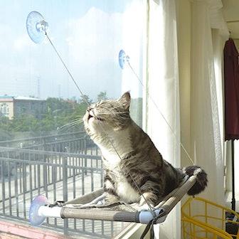 PEFUNY Cat Hammock Window Seat