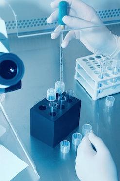 artificial insemination procedure in lab