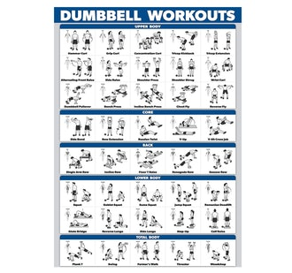 Palace Learning Dumbbell Workout Poster