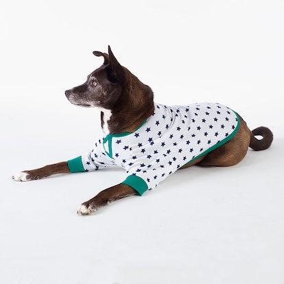 Family Snug-Fit Company Organic Cotton Dog Pajamas - Star