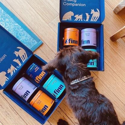 Super Pup Bundle + Free Calming Aid