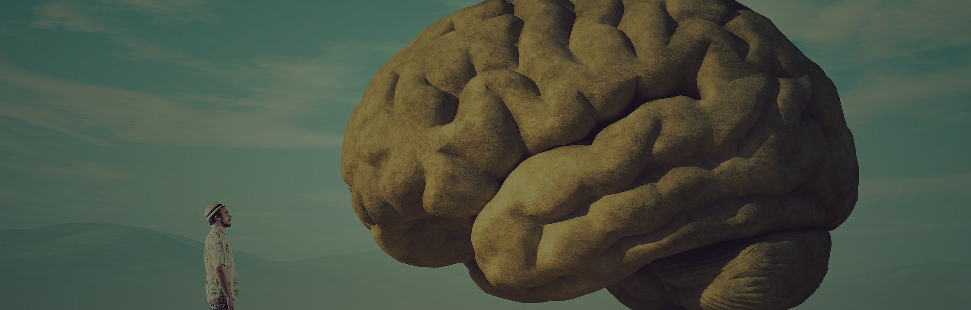 The young and conceptual image of a large stone in the shape of the human brain.