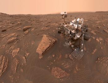 NASA curiosity selfie