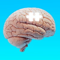 Scientists discover what enables conscious thought and feeling