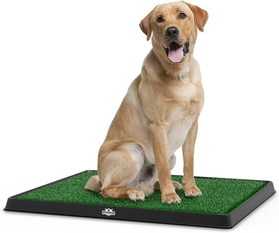 PETMAKER Artificial Grass Mat, 20 By 25 Inches