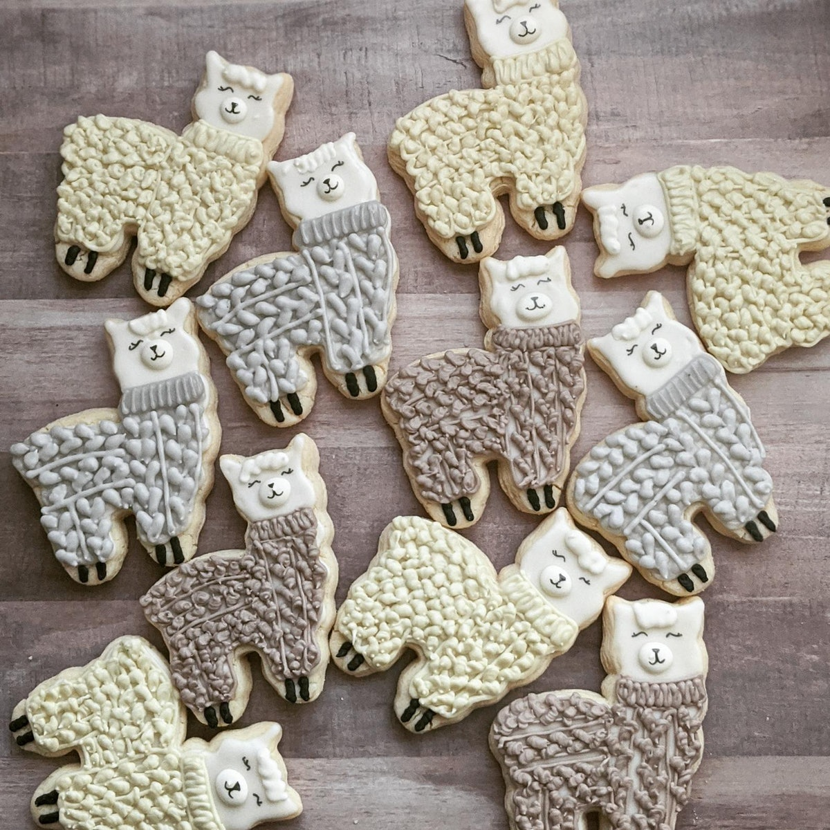 Cookies Inspired by Animals in Knit Sweaters
