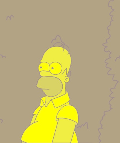 Homer Simpsons from the Simpsons