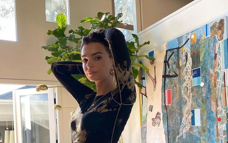 Emily Ratajkowski's home features a fiddle leaf fig tree