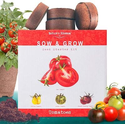 Nature's Blossom Tomato Garden Kit