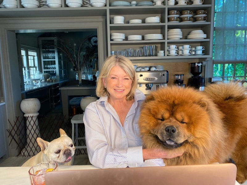 Martha Stewart's styling tips for open kitchen shelves include using beautiful ceramics