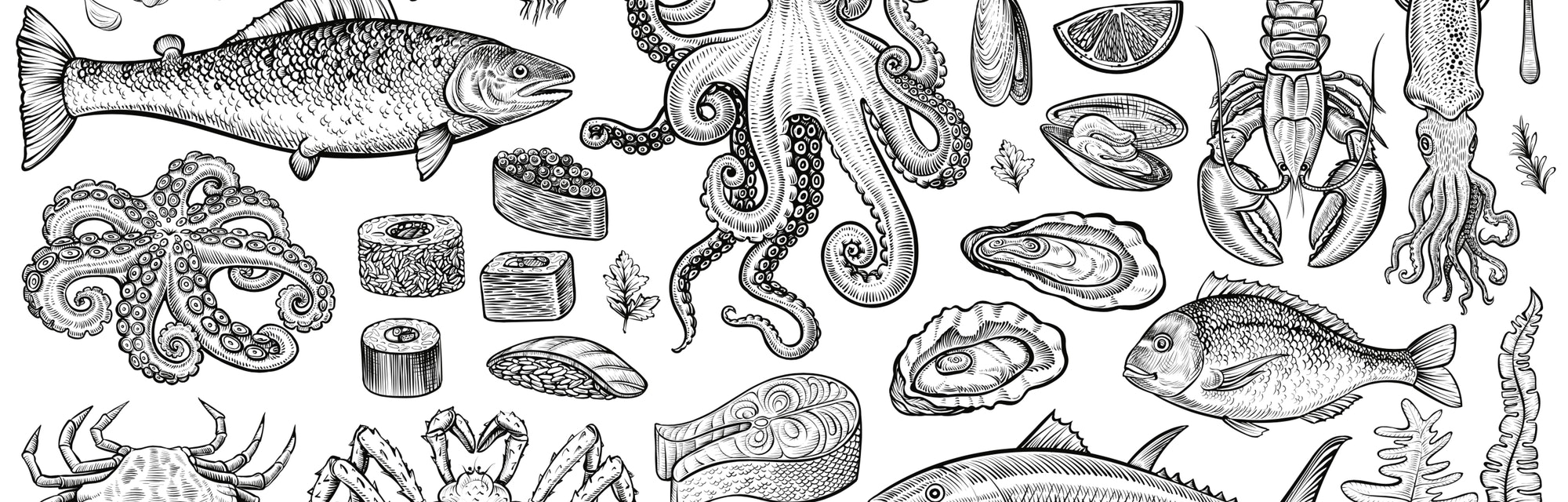 Seafood vector illustrations. Hand drawn line sea fishes, sushi rolls, oysters, mussels, lobster, squid, octopus, crabs, prawns, fish fillet, laminaria and wakame seaweeds. Healthy food natural set.