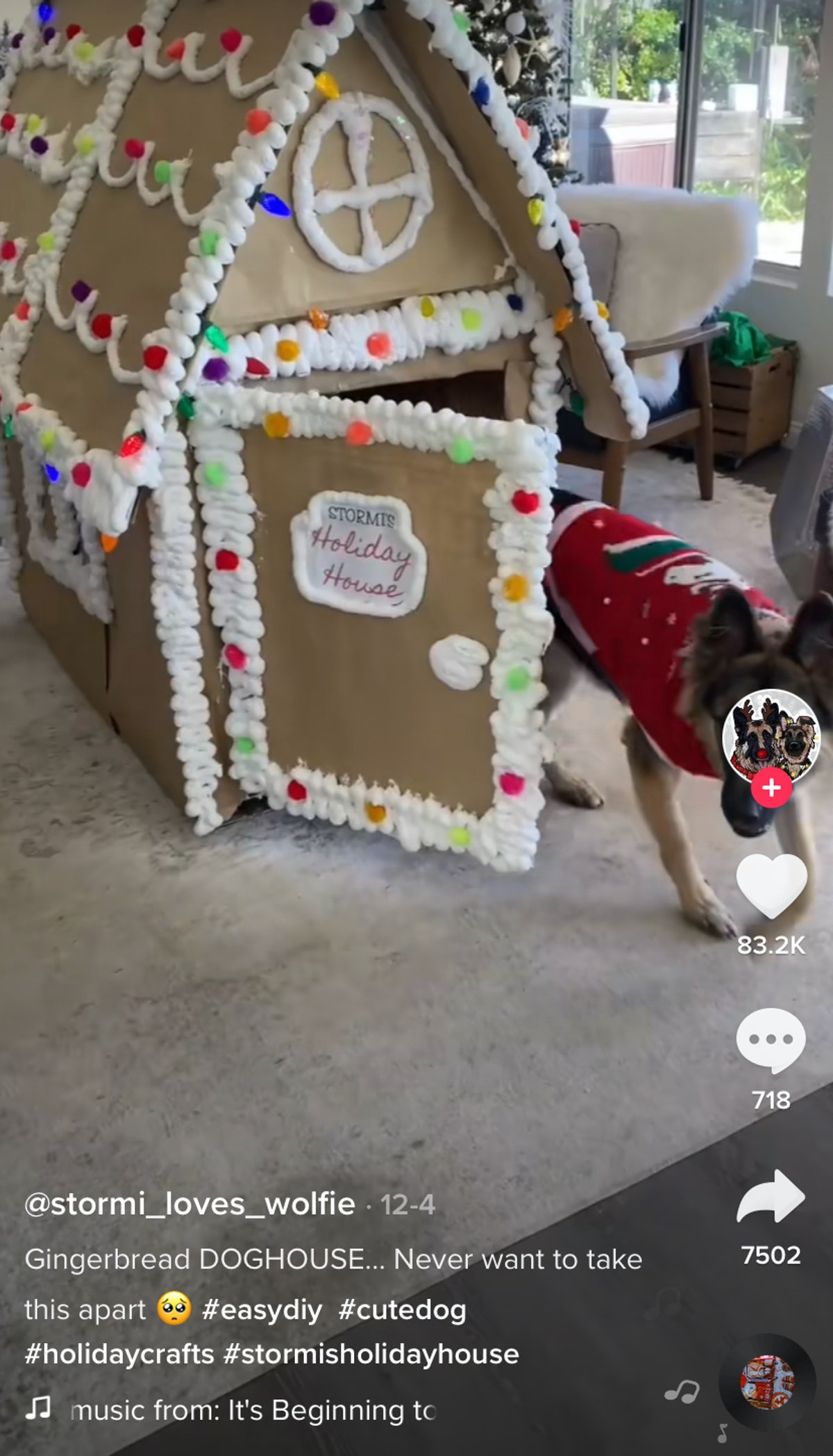 A dog runs out of his gingerbread dog house.
