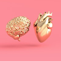 Brain scans reveal what new couples and old flames have in common