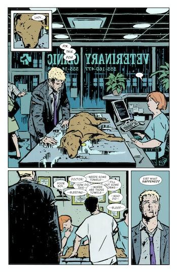 Hawkeye Lucky Pizza Dog