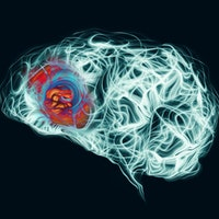 Brain study untangles the complicated relationship between fear and anxiety