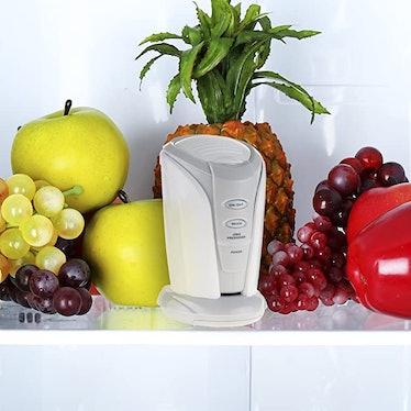 Chef Buddy Refrigerator Freshener