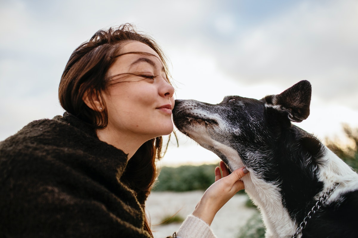 Young woman kissing dog