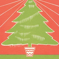 How green is your Christmas tree? 6 tips to reduce your carbon footprint