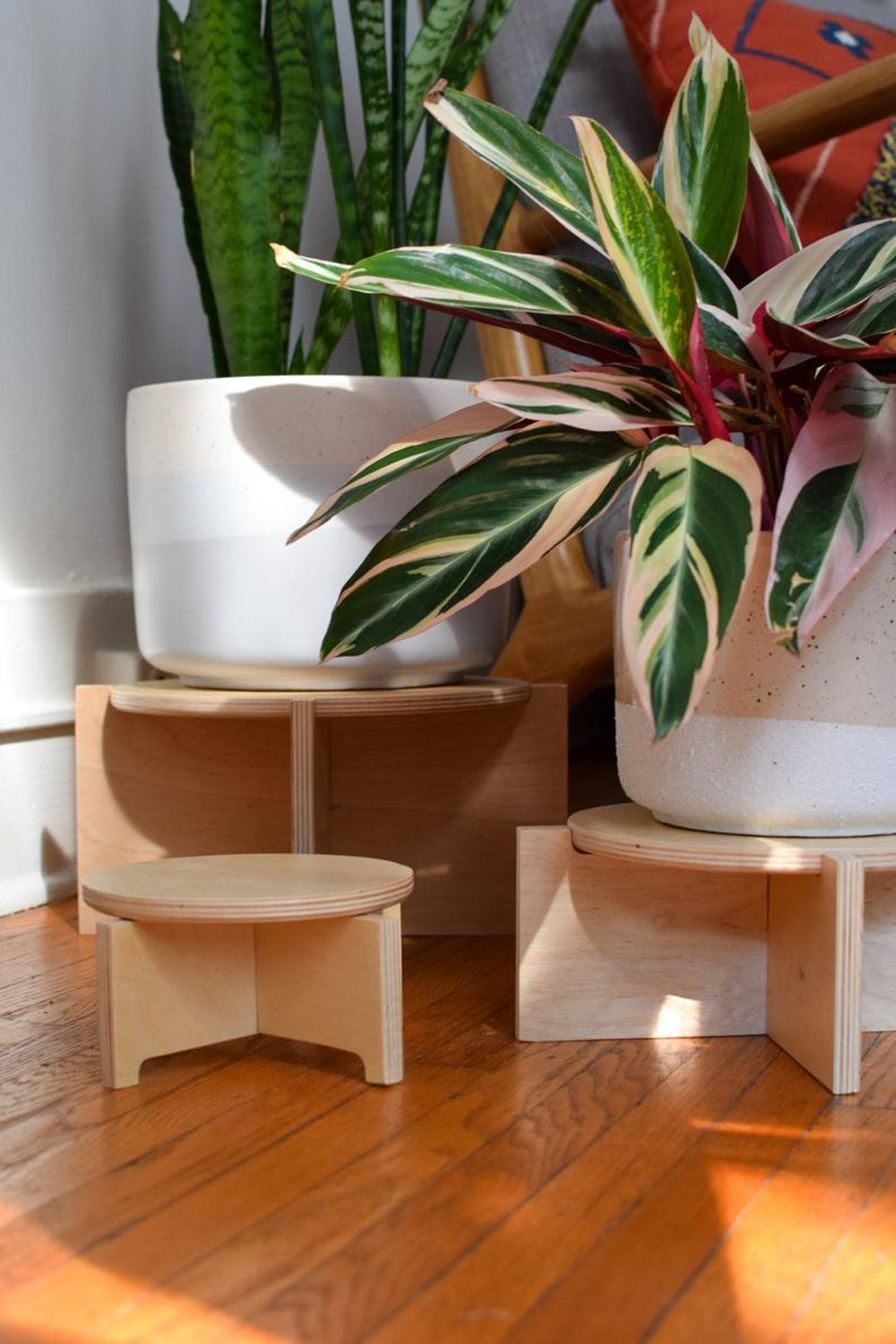 Ply Design Studios Modern Wood Plant Stand (Set of 3)
